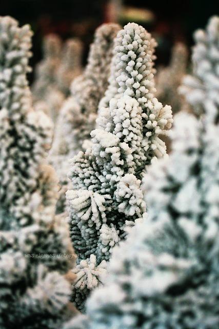 Herbst 2011 | waseigenes.com