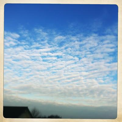 12 von 12 im Februar 2012 | Mein Tag in Bildern | waseigenes.com