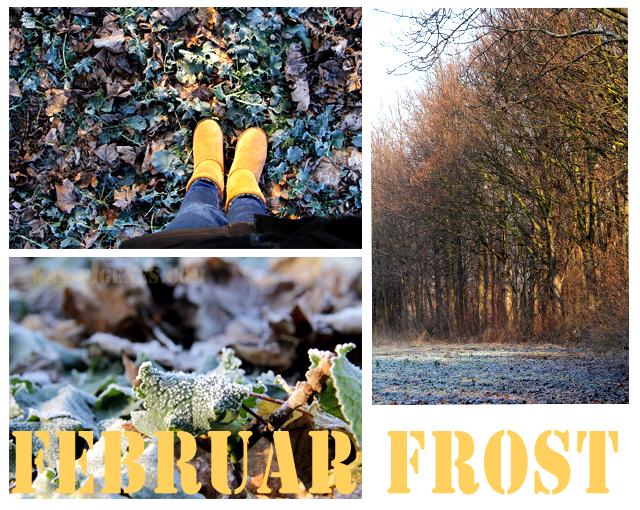 Februar Frost | waseigenes.com