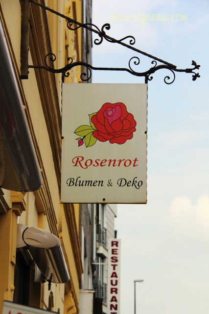 berrenrather_rosenrot_waseigenes24