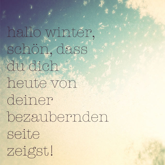 winter-12v12