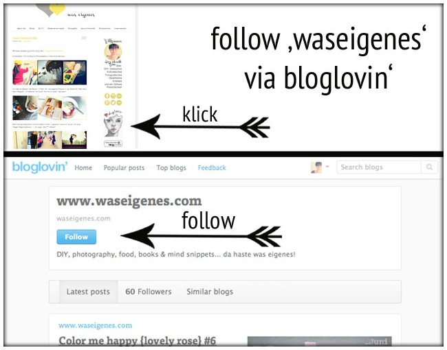 follow waseigenes via bloglovin