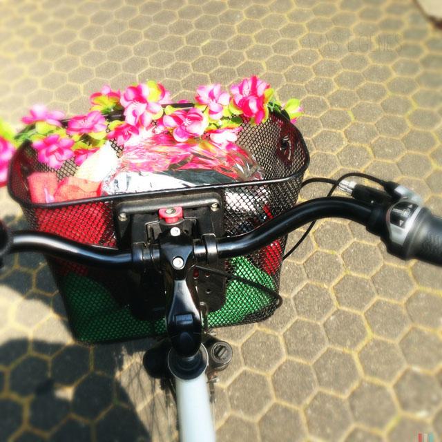 12v12 waseigenes fahrrad blumen