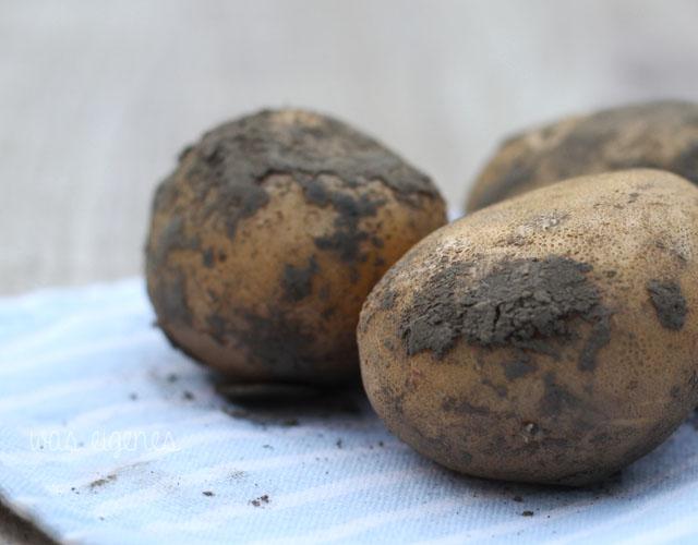 kartoffelsuppe hallo herbst was eigenes 2