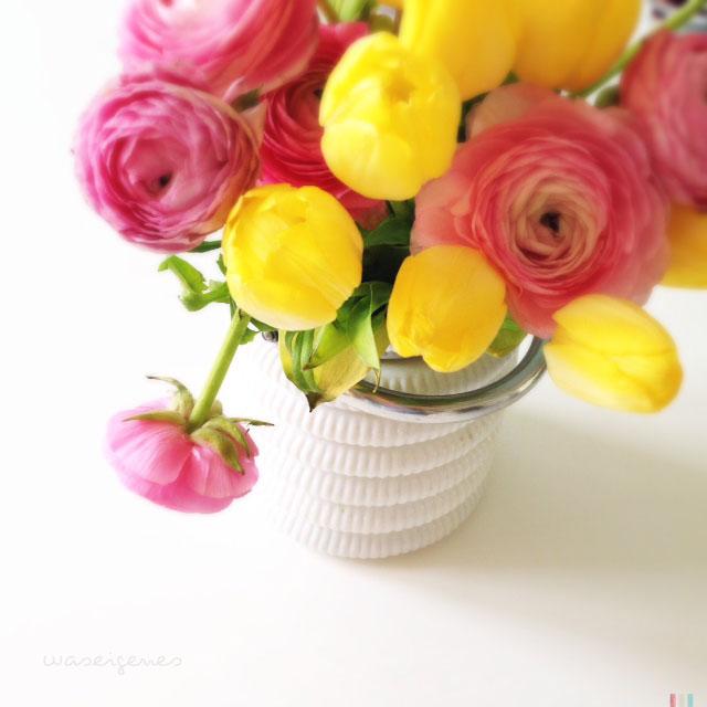 Blumen im märz  was eigenes