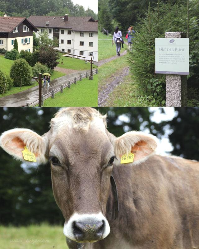 Haubers-Alpenresort-was-eigenes-Blog