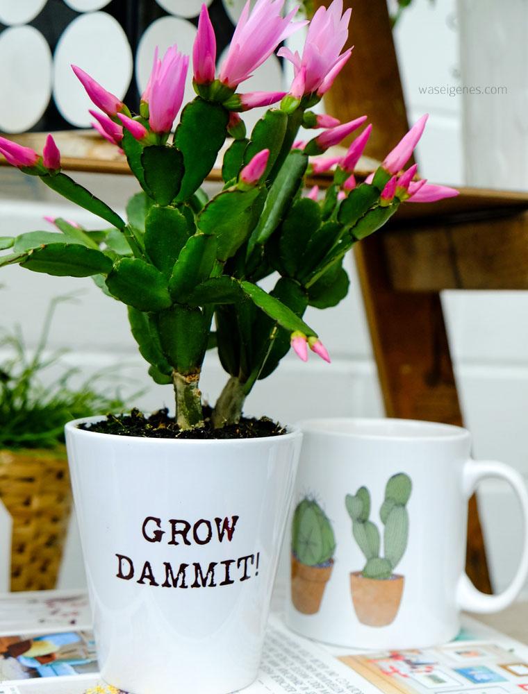 urban jungle | Grünpflanzen & Pflanzendeko | grow dammit! | waseigenes.com