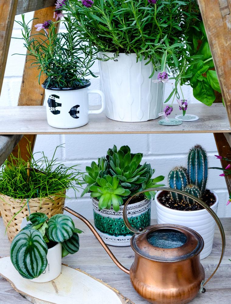 urban jungle | Grünpflanzen & Pflanzendeko | midcentury Kupferkanne ByBeautifulBavaria | waseigenes.com