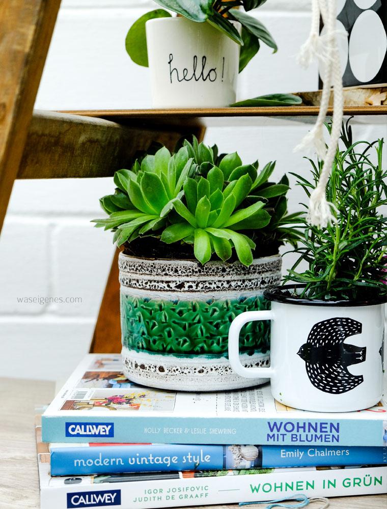 urban jungle | Grünpflanzen & Pflanzendeko | hello Blumentopf | typealive | waseigenes.com