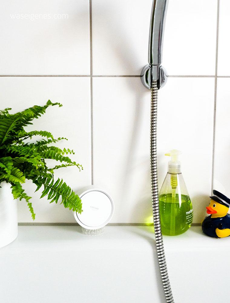 Grohe Sense + Ondus App: Wassermelder für die eigenen vier Wände | waseigenes.com