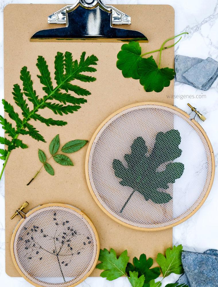 Getrocknete Blätter mit Tüll im Stickrahmen einspannen | Pflanzen Deko kreativ und selbstgemacht | waseigenes.com