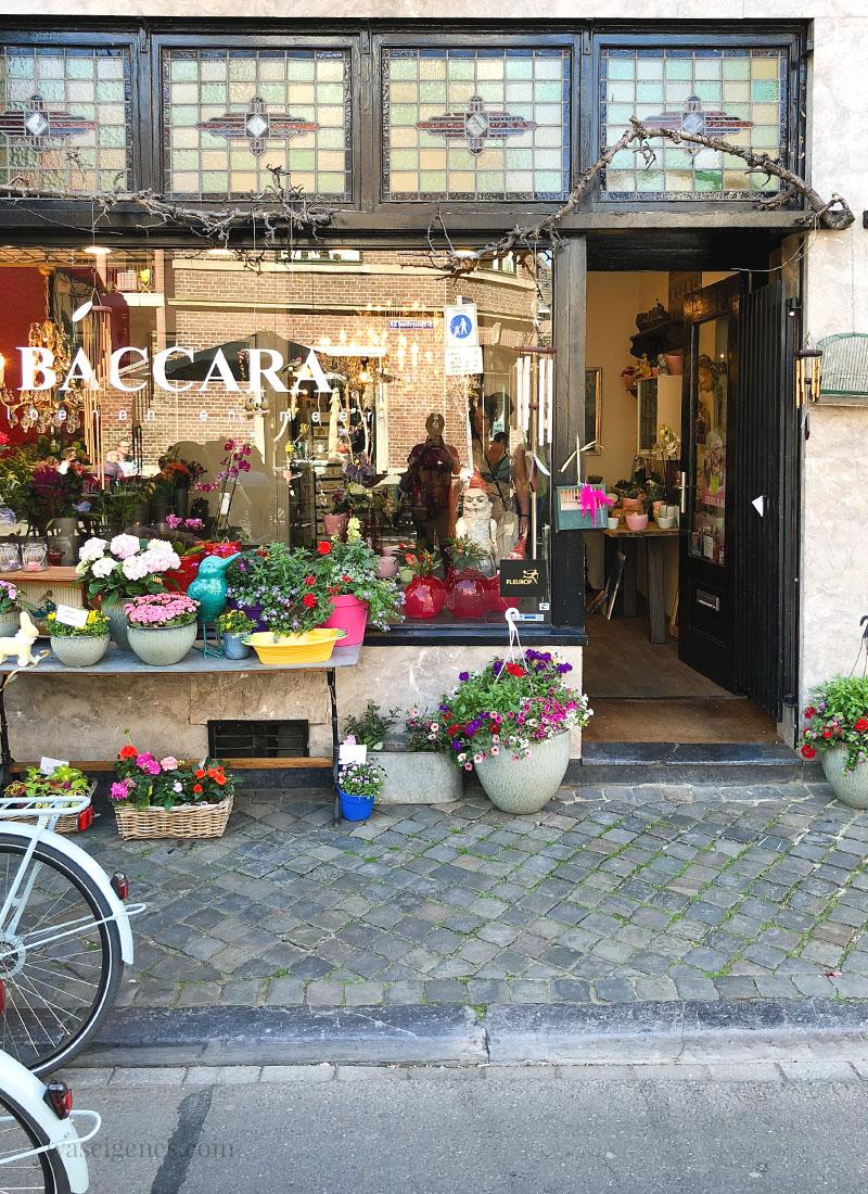 Maastricht: Baccara Blumenladen | waseigenes.com