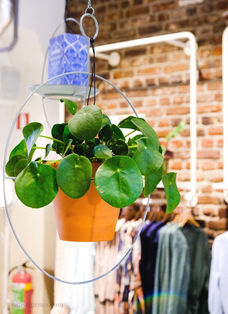 Maastricht: Sissy Boy (Adresse:Markt 55) | waseigenes.com