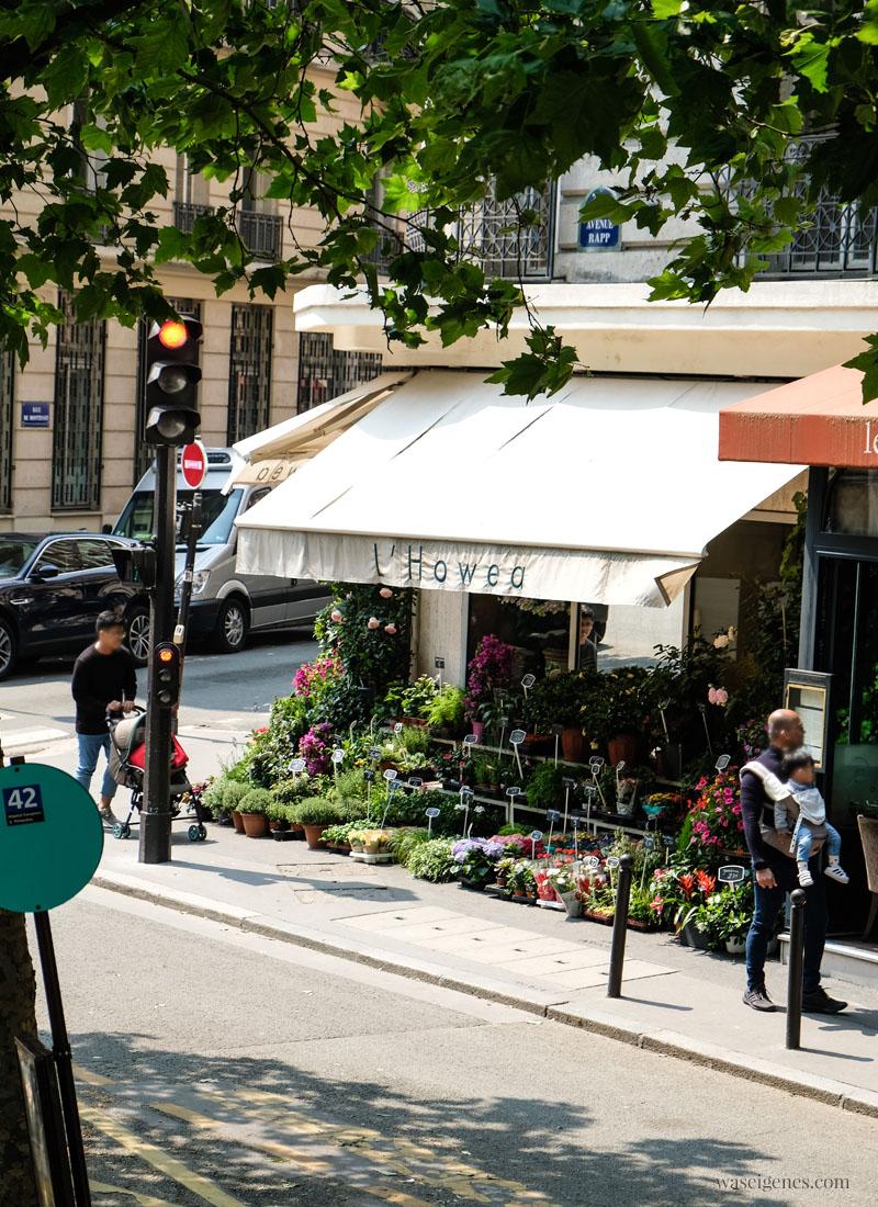 Sightseeing Paris | waseigenes.com - L´Howea Blumengeschäft
