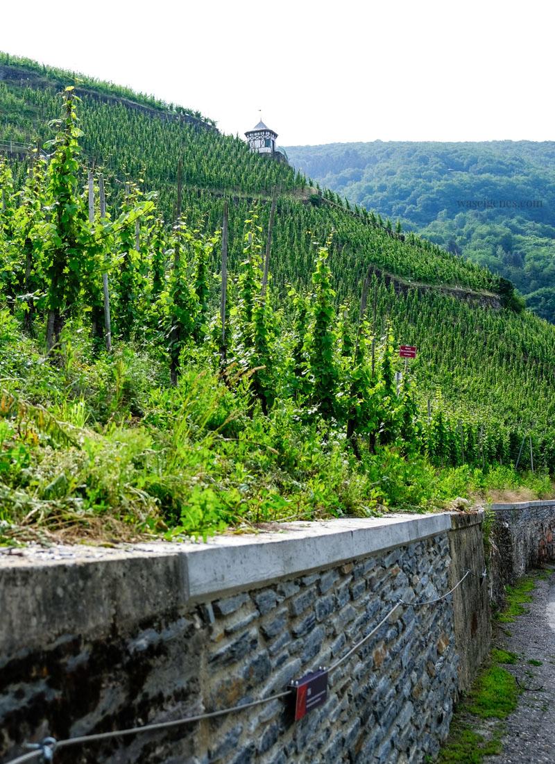 Bernkastel-Kues, Rheinland-Pfalz | Weinberge | waseigenes.com