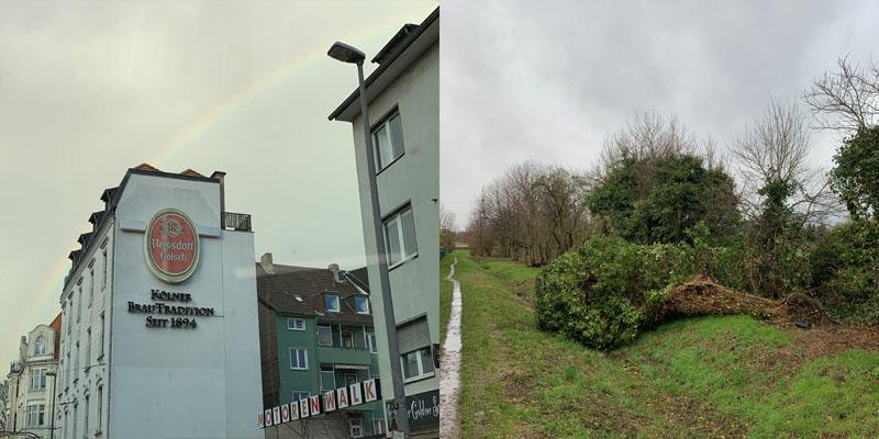 Monatsrückblick März 2019, waseigenes.com