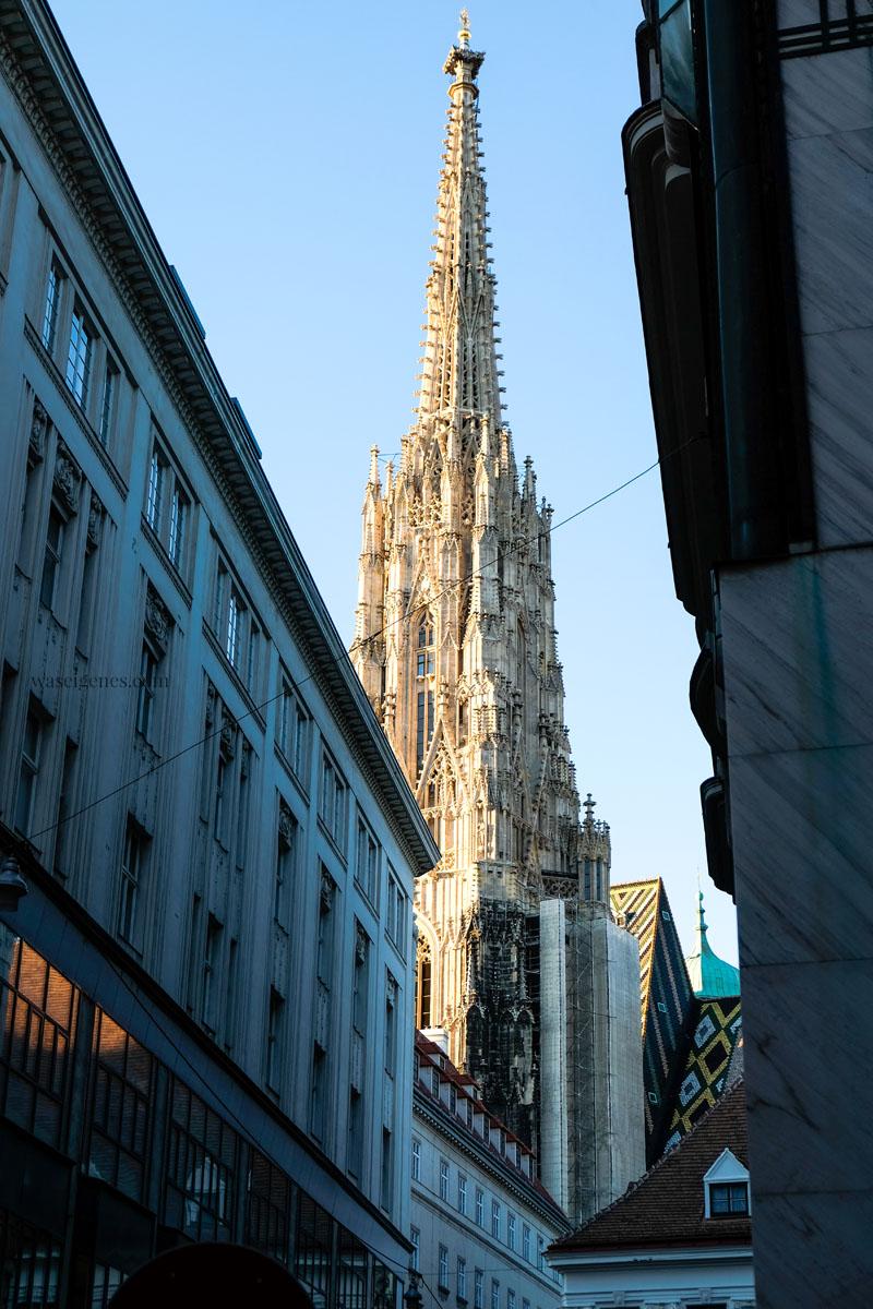 Sightseeing Wochenende: Wien | waseigenes.com | Stephansdom