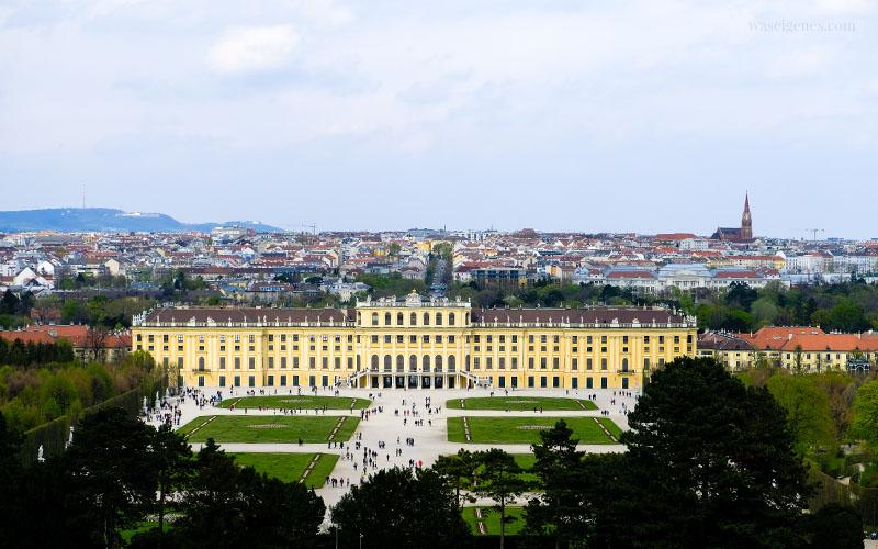 Sightseeing Wochenende: Wien | waseigenes.com | Schönbrunn