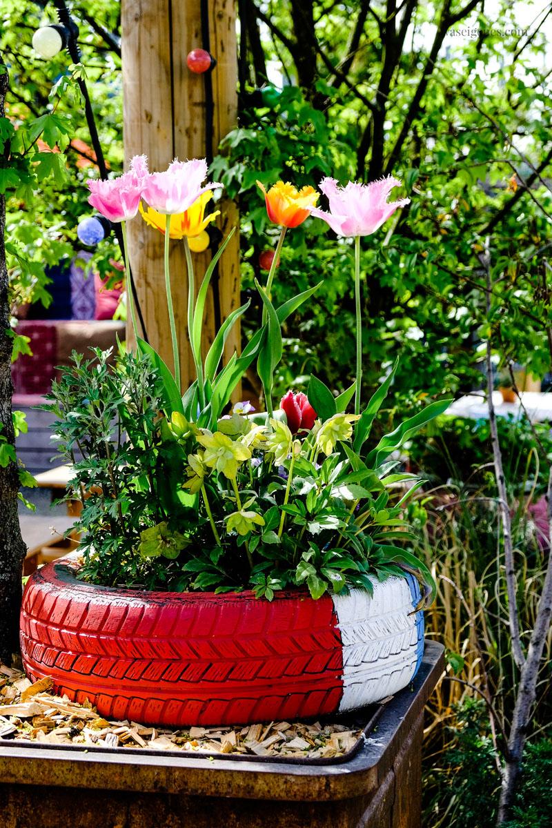 """Tulpen im Autoreifen, urban gardening: Stadtgarten """"Frau Gerolds Garten"""" in Zürich West, waseigenes.com"""