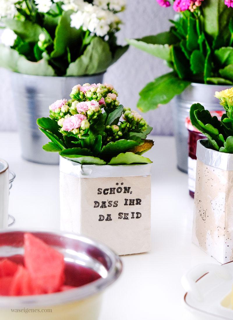 DIY Milchtüten Blumentopf | Kalanchoe auf dem Küchentisch | waseigenes.com
