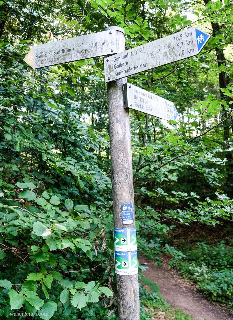 Sonntagsausflug: Der Milchwanderweg in der Eifel (Start in Steinfeld), waseigenes.com