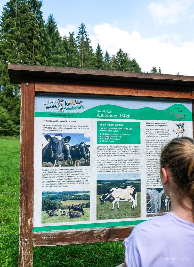 Info Tafel rund um das Thema Milch und die Kuh - Der Milchwanderweg in der Eifel, waseigenes.com