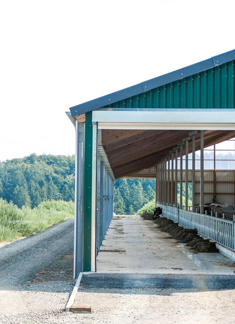 Der Milchwanderweg in der Eifel (Thelen Hof), waseigenes.com