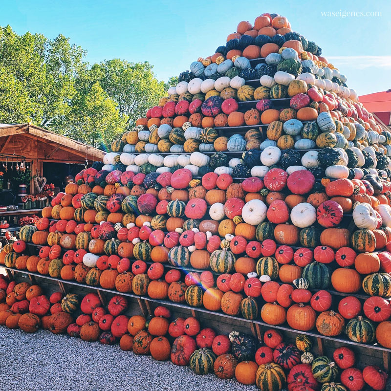 Hallo Herbst 2019 - Herbstverrückt - Kürbispyramide | waseigenes.com