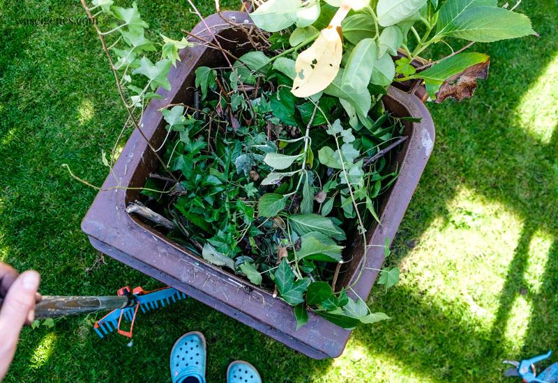 12 von 12 im Oktober 2019 - Mein Tag in Bildern | waseigenes.com  Gartenarbeit