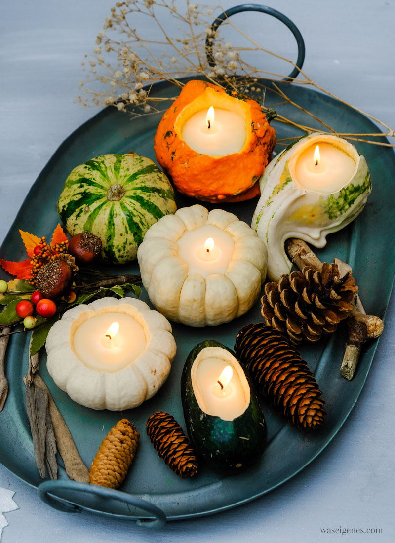 Kürbis Kerzen DIY: Ausgehöhlte Zierkürbisse (z.B. Baby Boo), flüssiges Wachs, Kerzendocht | DIY Anleitung #KürbisKerzen #DIY #HerbstDIY | waseigenes.com