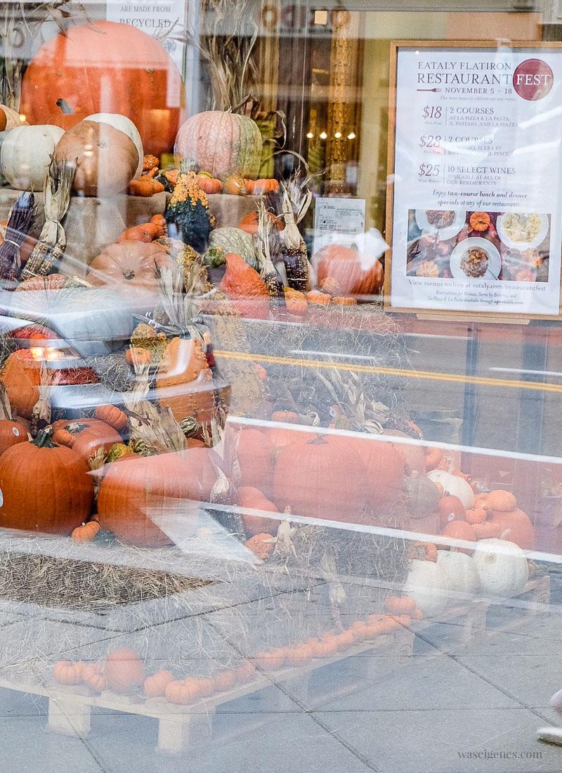 New York: Kürbisse im Schaufenster des Eataly Restaurants | waseigenes.com