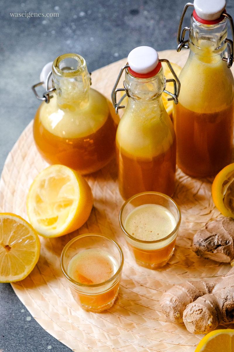 Rezept: Ingwer Shot mit Kurkuma, Zitrone und Agavendicksaft | waseigenes.com