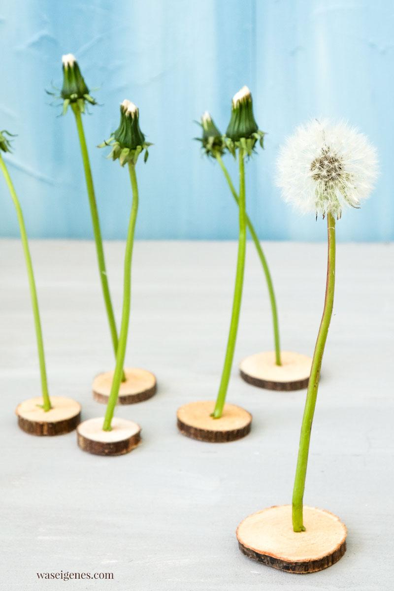 DIY: Pusteblumen haltbar machen | waseigenes.com #we #waseigenes #pusteblumen #DIY