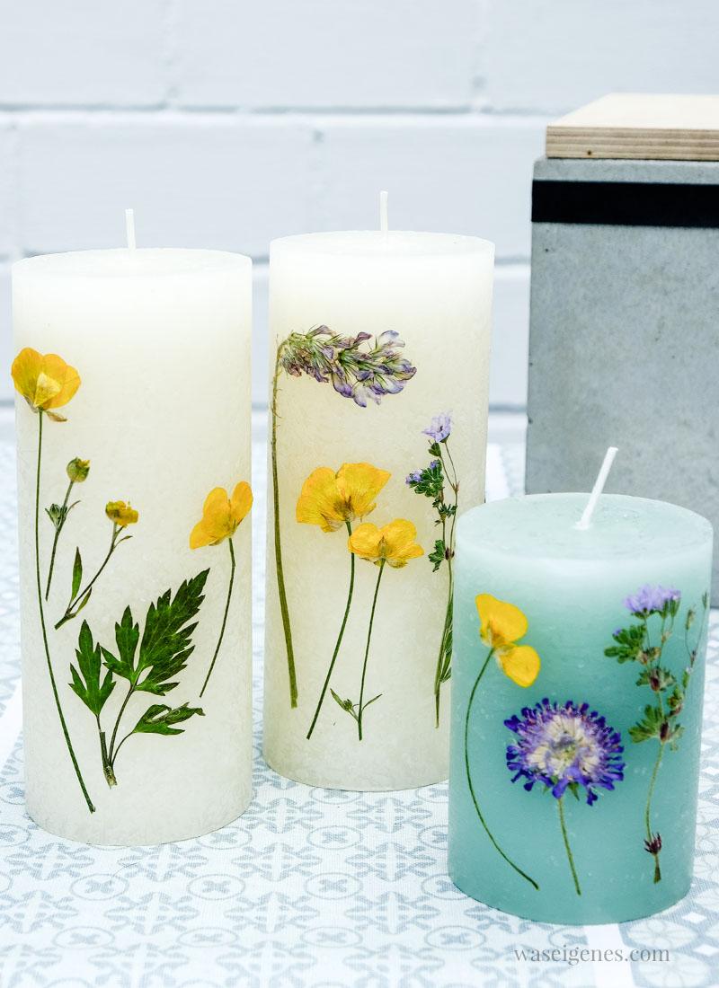 DIY: Stumpenkerzen mit getrockneten Blumen gestalten und verzieren. Hierfür eignet sich ganz wunderbar ein Fön | waseigenes.com