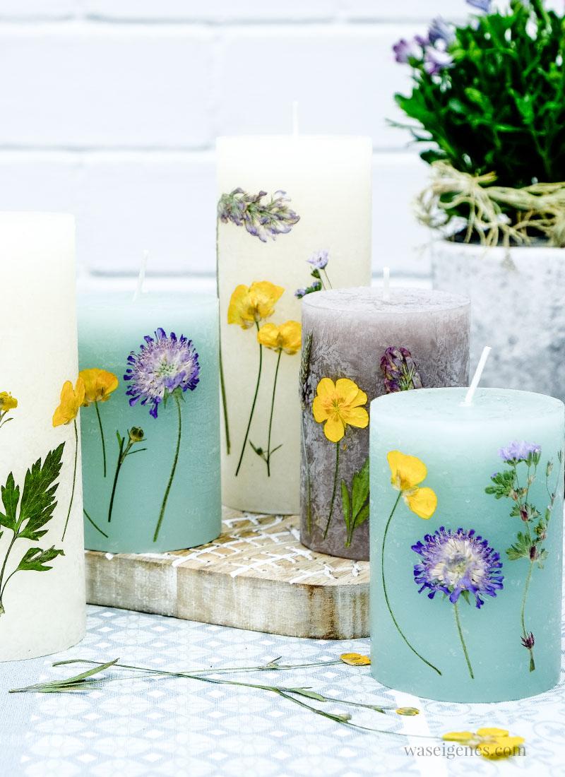 Kerzen mit getrockneten Blumen verzieren ~ Hübsche und einfache DIY Idee | waseigenes.com