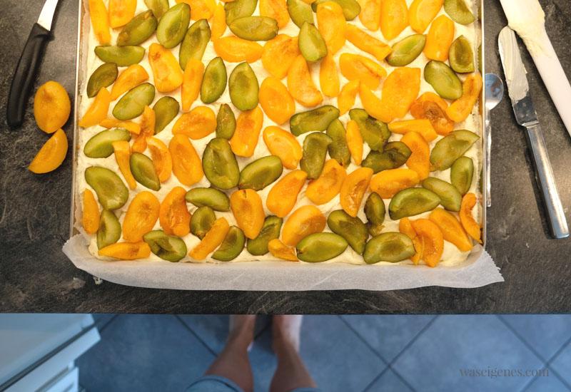 12 von 12 im August 2020 - Mein Tag in Bildern | waseigenes.com | Zwetschgen-Aprikosen-Kuchen