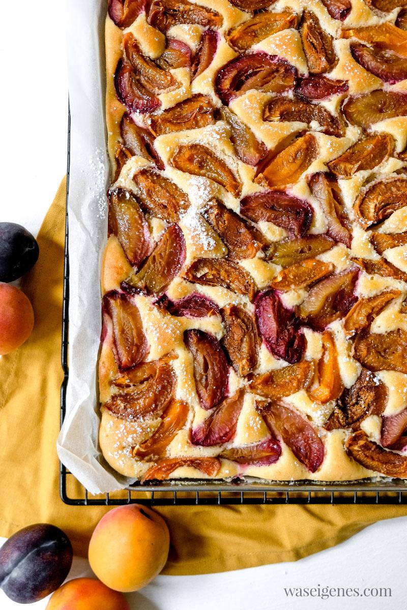 Rezept: Blechkuchen mit Zwetschgen und Aprikosen | waseigenes.com