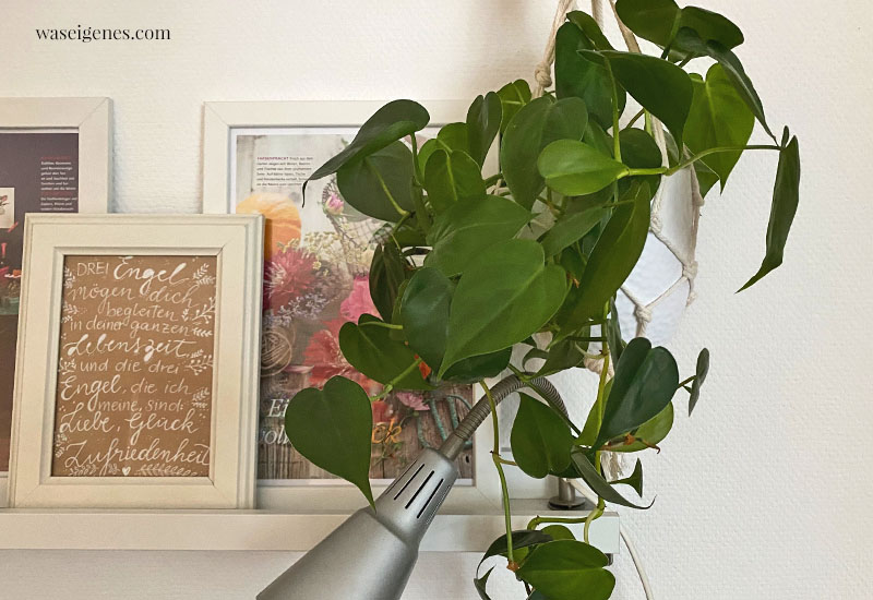 12 von 12 im Oktober 2020 | Mein Tag in Bildern | waseigenes.com | Hängepflanze Makramee