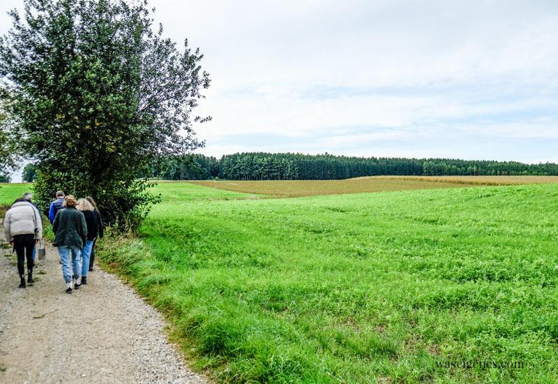 Auf dem Weg zum Soja Feld in Bayern | Soja Anbau in Deutschland | waseigenes.com