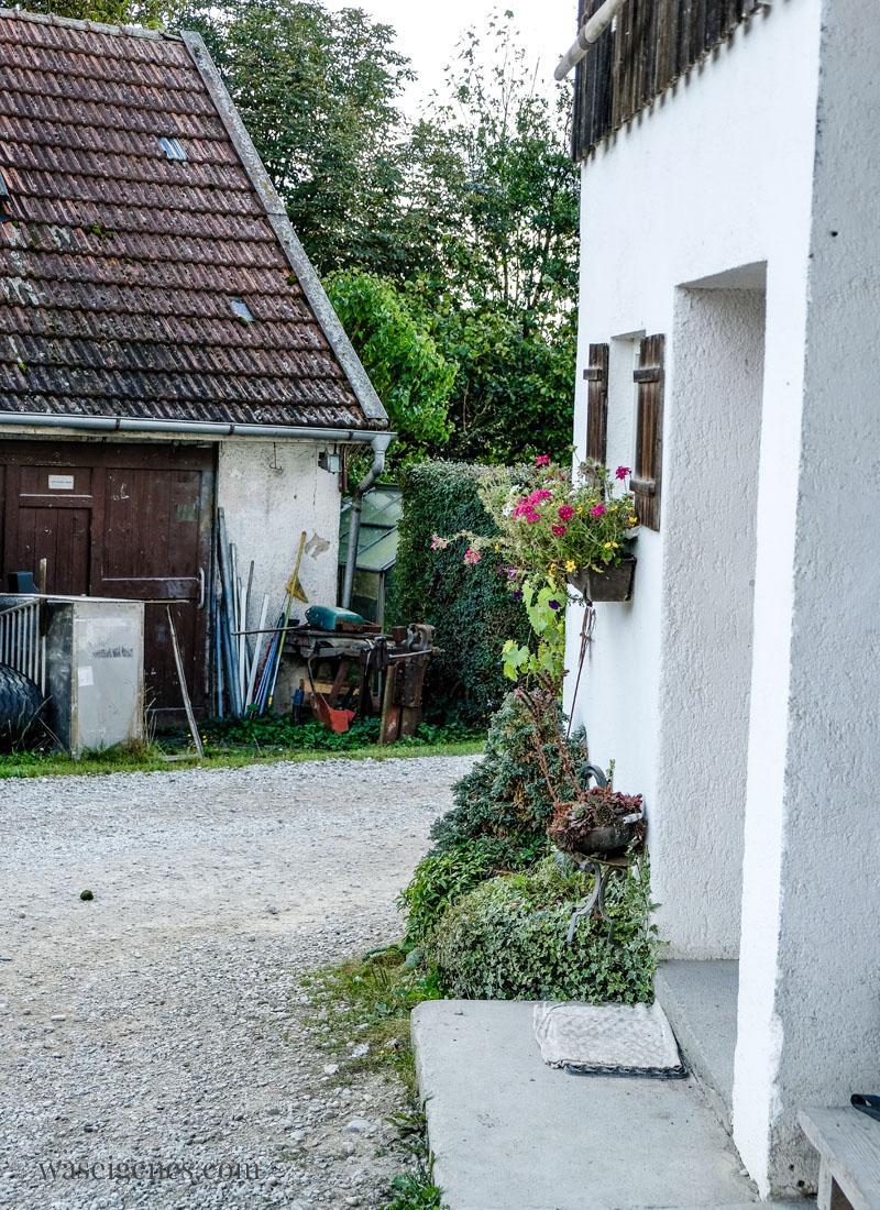 Bio Bauernhof der Familie Hefele in Ainhofen {München} - Soja Anbau in Deutschland | waseigenes.com