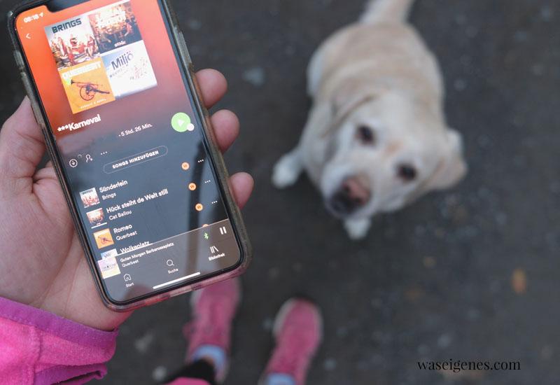 12 von 12 im November 2020 | Mein Tag in Bildern | waseigenes.com | Spotify Liste Karneval und Mollie
