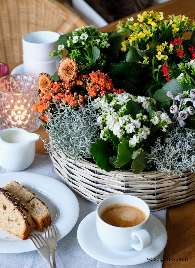 Herbstlich dekorierter Pflanzring mit Kalanchoes, Stacheldraht | Rezept Zimtkuchen | waseigenes.com