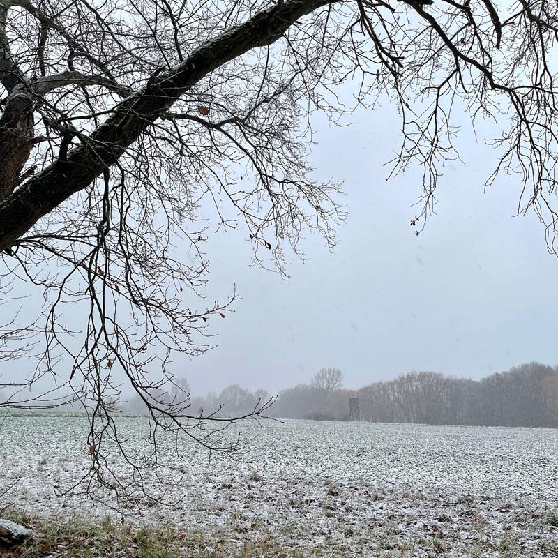 Das war mein Januar 2021 | Monatsrückblick | waseigenes.com | Schnee