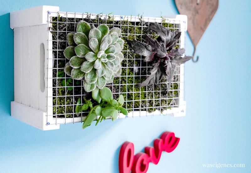 DIY vertical garden | Hängende Gärten | Wanddeko mit Pflanzen selber machen | waseigenes.com