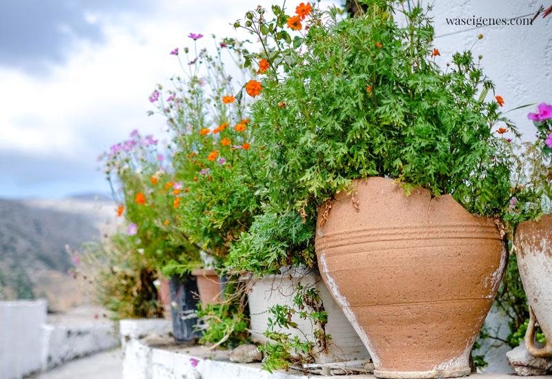 Familienurlaub 2021 - Kreta |   Polyrrhenia {Polyrinia} | waseigenes.com