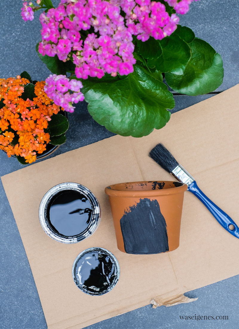 DIY bemalte Terrakotta Töpfe mit Tafelfarbe und Kreide   Kalanchoe   Unser Garten   Bine Güllich   waseigenes.com